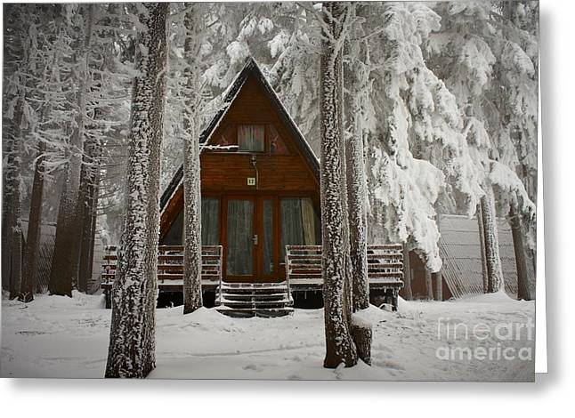 Forest Pyrography Greeting Cards - Winter hut Greeting Card by Victor Georgiev