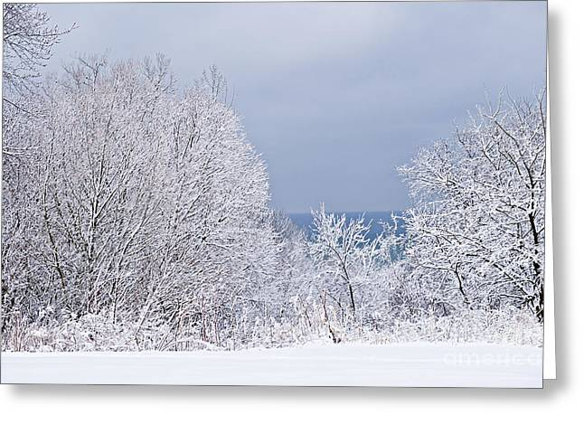 Gray Sky Greeting Cards - Winter landscape Greeting Card by Elena Elisseeva