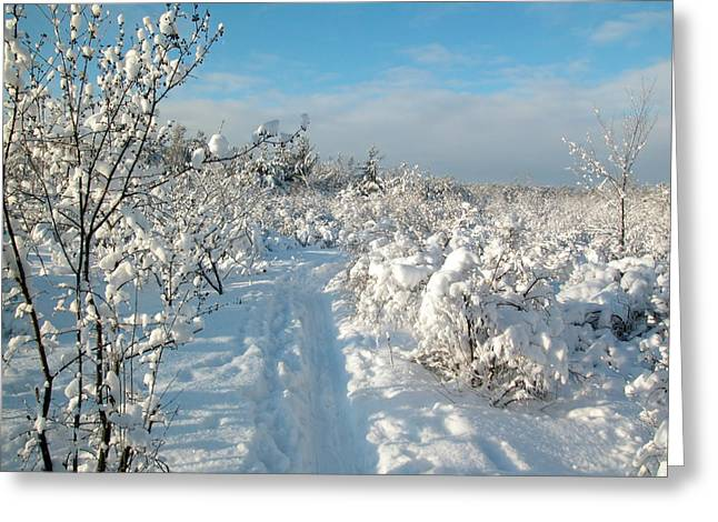 Mud Season Greeting Cards - Winter Landscape Ottawa Greeting Card by Rob Huntley