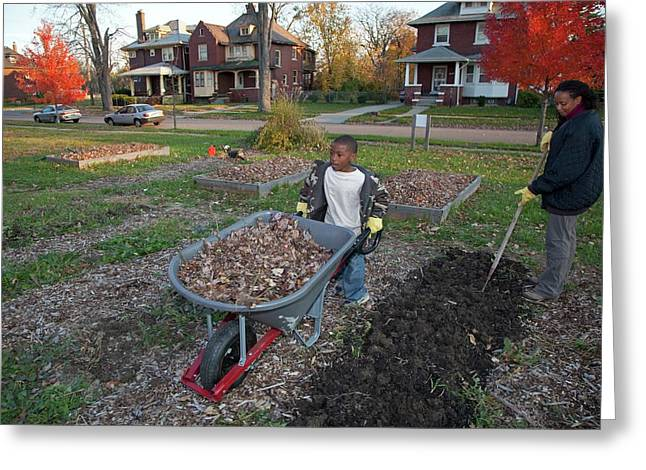 Winter Mulching In A Community Garden Greeting Card by Jim West