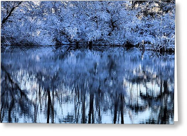 Pond In Park Greeting Cards - Winter Reflections Greeting Card by Dan Sproul