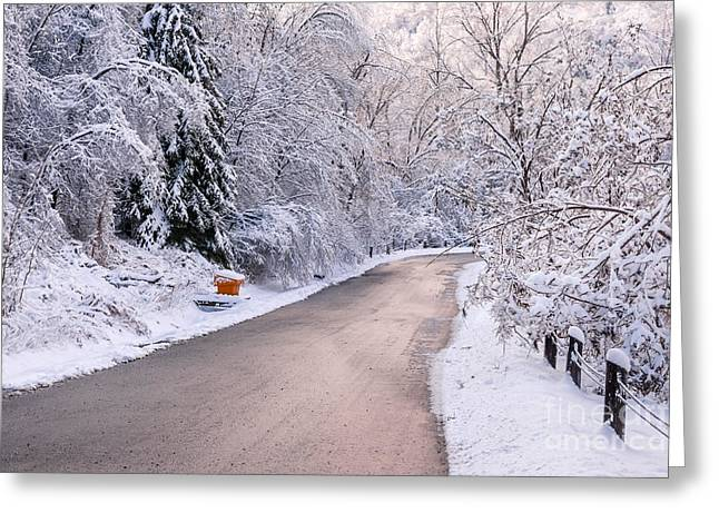 Pink Road Greeting Cards - Winter road after snowfall Greeting Card by Elena Elisseeva