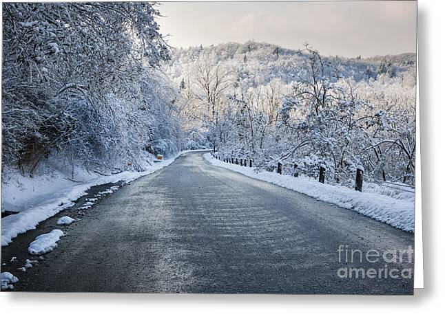 Snowstorm Greeting Cards - Winter road Greeting Card by Elena Elisseeva