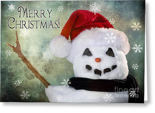 Christmas Greeting Photographs Greeting Cards - Winter Snowman Greeting Card by Cindy Singleton