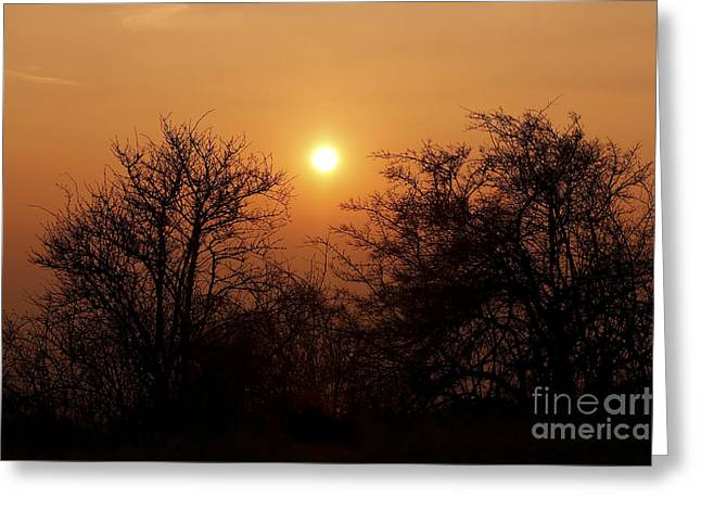 Gloaming Photographs Greeting Cards - Winter Sunset Greeting Card by Michal Boubin