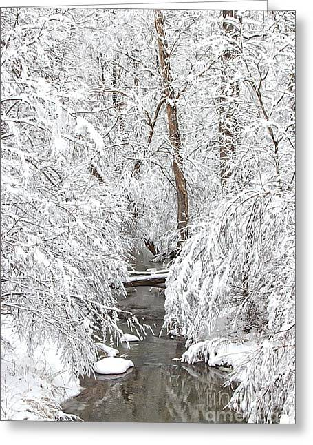 Ski Art Greeting Cards - Winter Wonderland Greeting Card by Benanne Stiens