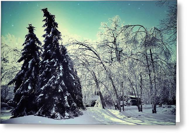Bare Trees Digital Greeting Cards - Winter Wonderland Greeting Card by Natasha Marco