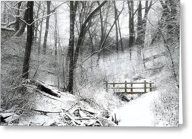 Blanket Photographs Greeting Cards - Winter Wonderland  Greeting Card by Scott Norris