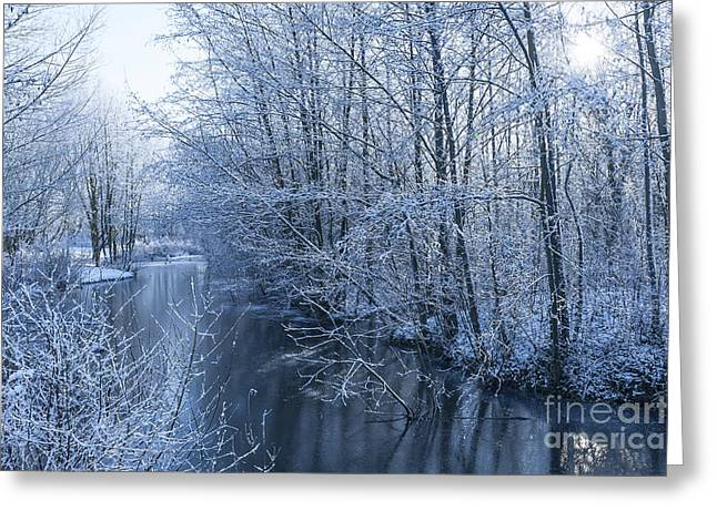 Snowy Stream Greeting Cards - Winter Wonderland Greeting Card by Svetlana Sewell