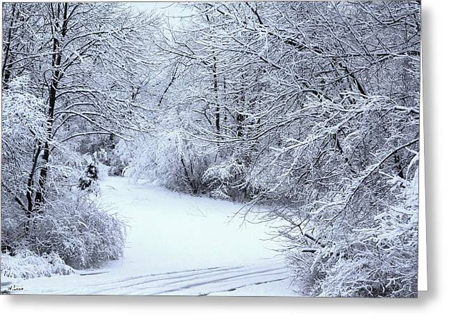 Sofa Size Greeting Cards - Winter Wonderland Greeting Card by Wendell Lowe