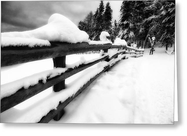 Drifting Snow Photographs Greeting Cards - Winters Blanket Greeting Card by Mountain Dreams