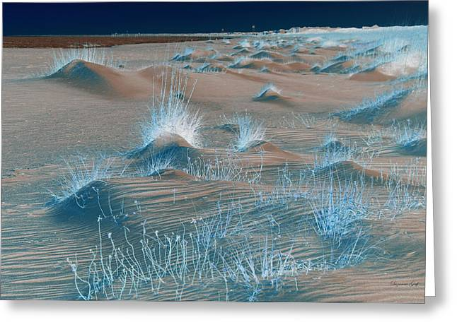 Winters Dunes IIA Greeting Card by Suzanne Gaff