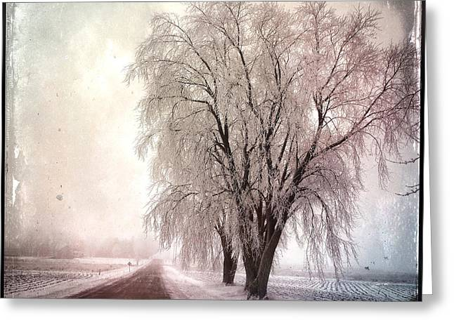 Repurposed Greeting Cards - Wisconsin Winter 3 Greeting Card by Gregg Jabs
