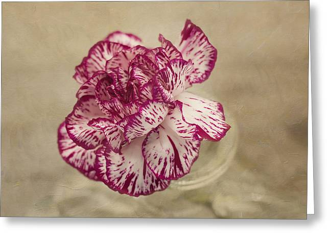 Textured Floral Greeting Cards - With Love Greeting Card by Kim Hojnacki