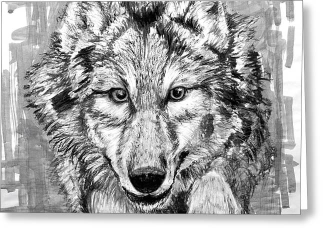 Bad Drawing Greeting Cards - Wolf Greeting Card by Ian Keith Murray