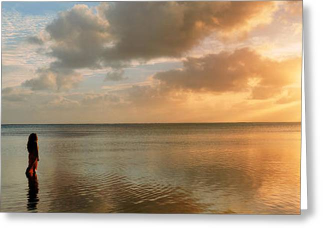 Looking At View Greeting Cards - Woman Standing On Sandbar Looking Greeting Card by Panoramic Images