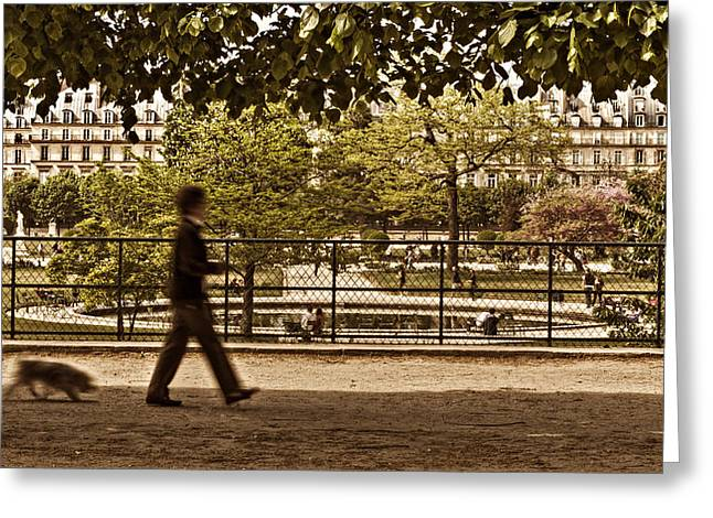 Tuileries Greeting Cards - Woman Walking Dog in Tuileries Garden Greeting Card by Barry O Carroll