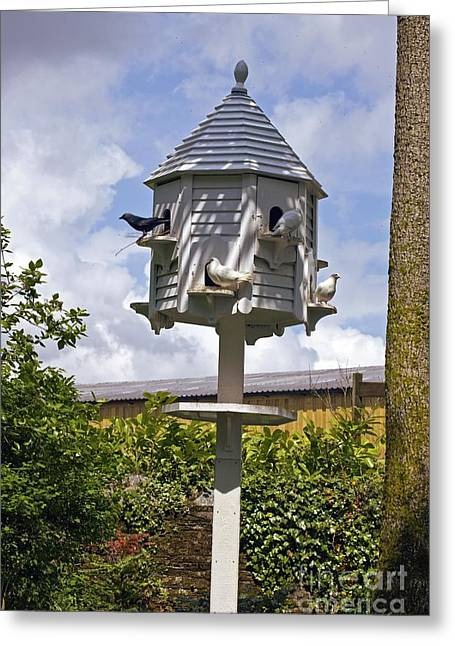 Dovecote Greeting Cards - Wooden Dovecote Greeting Card by Dr. Keith Wheeler