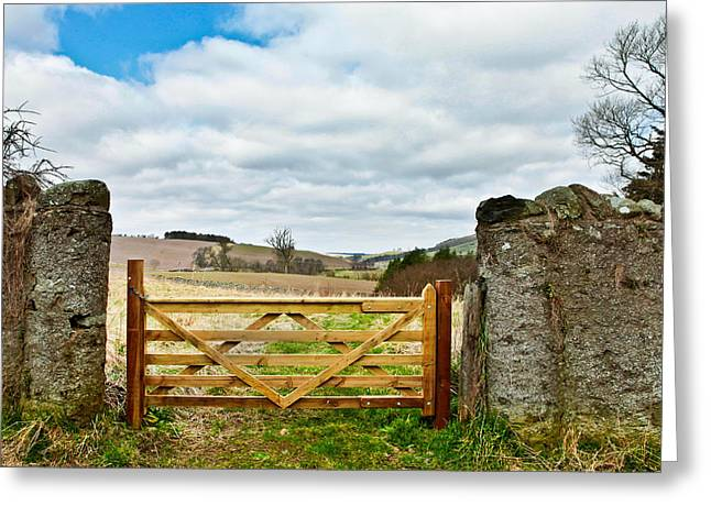 Border Photographs Greeting Cards - Wooden gate Greeting Card by Tom Gowanlock