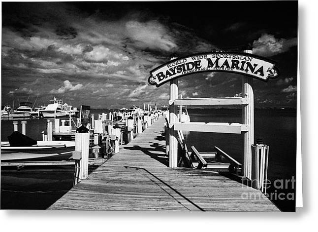 World Wide Sportsman Greeting Cards - World Wide Sportsman Bayside Marina Islamorada Florida Keys Usa Greeting Card by Joe Fox