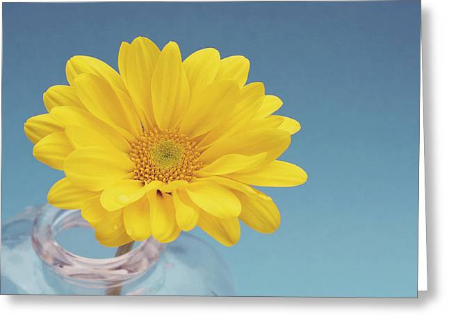 Floral Photographs Greeting Cards - Yellow and blue Greeting Card by Nastasia Cook