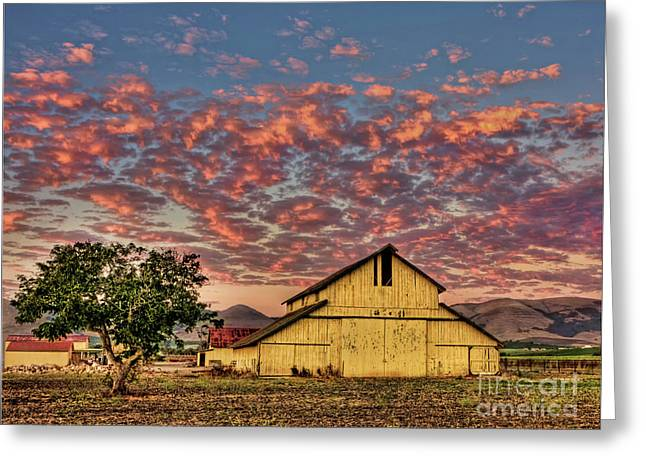 Old Country Roads Greeting Cards - Yellow Barn Greeting Card by Beth Sargent