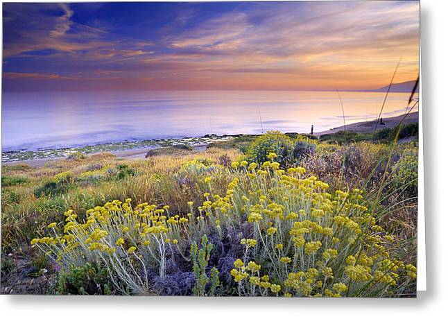 Blue Green Wave Greeting Cards - Yellow flowers at the sea Greeting Card by Guido Montanes Castillo