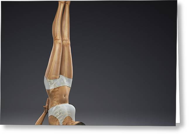 Physical Body Greeting Cards - Yoga Shoulderstand Pose Greeting Card by Science Picture Co