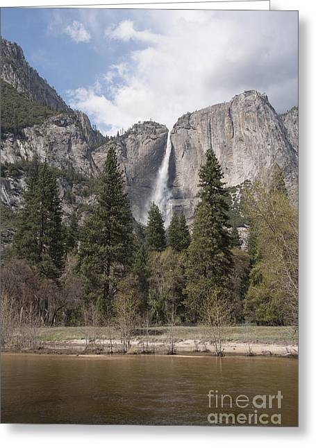 Vertical Composition Greeting Cards - Yosemite National Park Greeting Card by Juli Scalzi