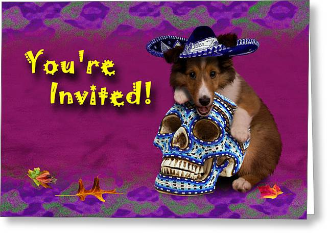 Party Invite Greeting Cards - Youre Invited Shetland Sheepdog Greeting Card by Jeanette K