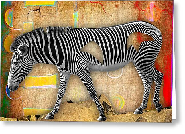 Zebras Greeting Cards - Zebra Collection Greeting Card by Marvin Blaine