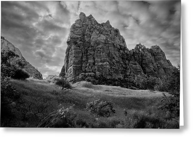 Zion Park Greeting Cards - Zion Greeting Card by Alexey Stiop