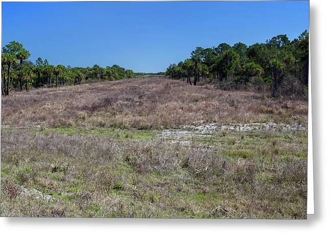 Everglades Restoration Greeting Card by Jim West