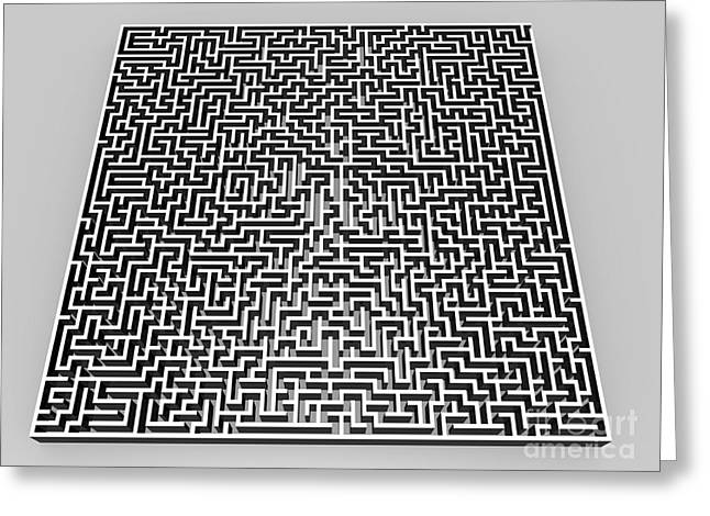 Cut-outs Greeting Cards - Maze Artwork Greeting Card by Pasieka
