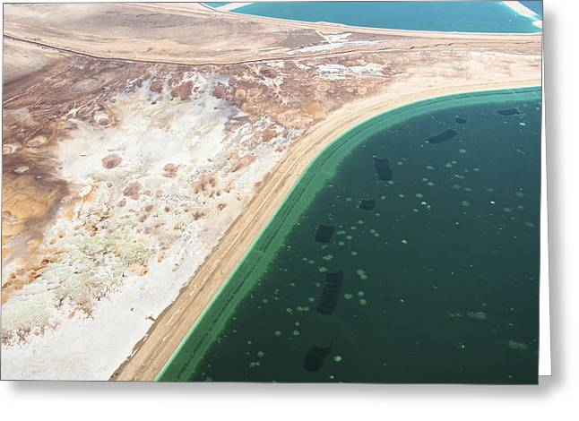Sea Of Salt Greeting Cards - Mineral Pools Area, Dead Sea Greeting Card by Ofir Ben Tov