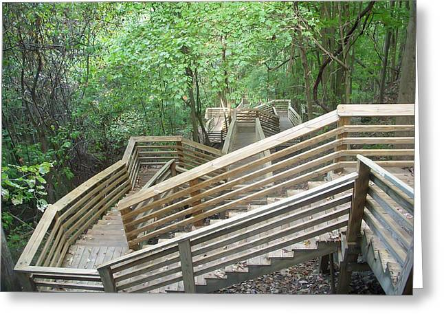 Wooden Stairs Greeting Cards - 1000 Steps Greeting Card by Aimee L Maher Photography and Art