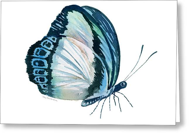 Background Paintings Greeting Cards - 101 Perched Danis Danis Butterfly Greeting Card by Amy Kirkpatrick