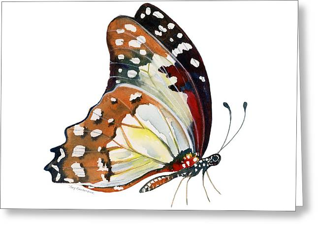 White Background Greeting Cards - 102 Perched White Lady Butterfly Greeting Card by Amy Kirkpatrick