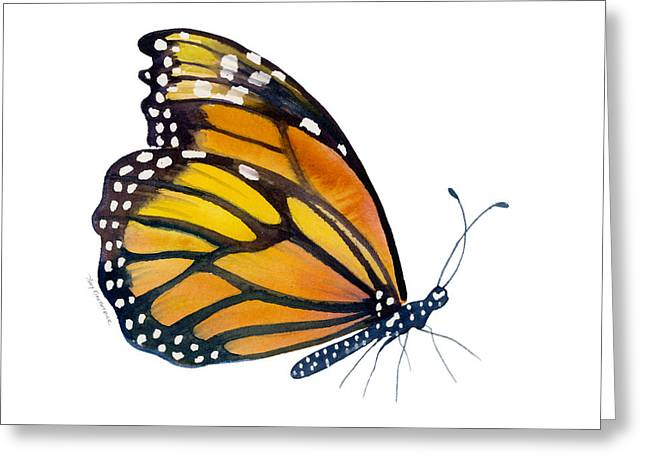 Monarch Greeting Cards - 103 Perched Monarch Butterfly Greeting Card by Amy Kirkpatrick