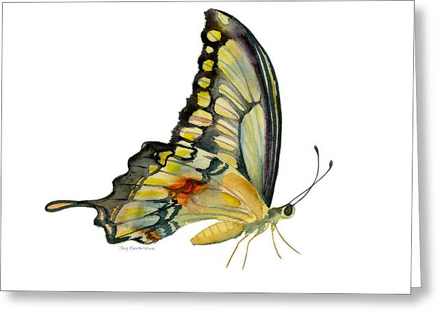 Yellow And Black Greeting Cards - 104 Perched Swallowtail Butterfly Greeting Card by Amy Kirkpatrick