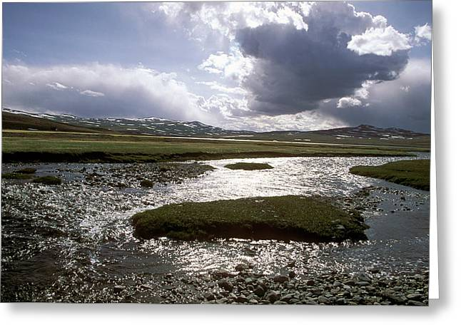 Glistening Water Greeting Cards - Altay Greeting Card by Anonymous