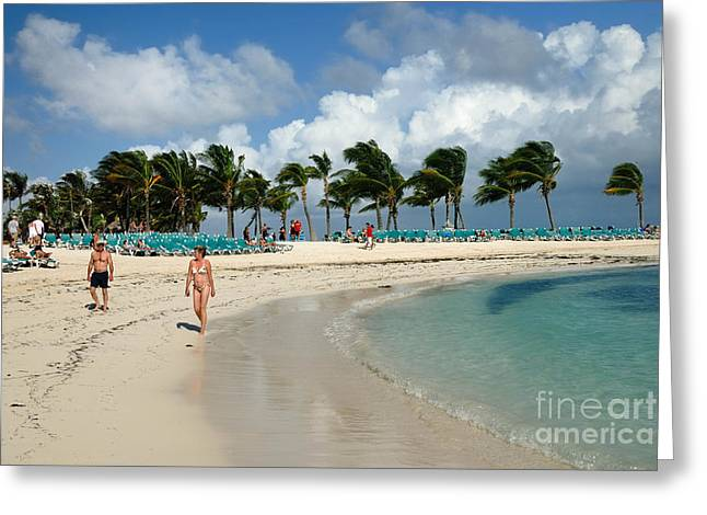 Little Stirrup Cay Greeting Cards - Beach at Coco Cay Greeting Card by Amy Cicconi