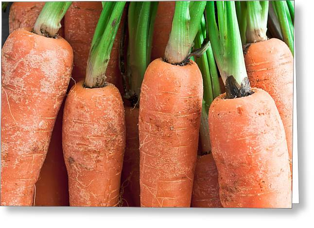 Healthy-lifestyle Greeting Cards - Carrots Greeting Card by Tom Gowanlock