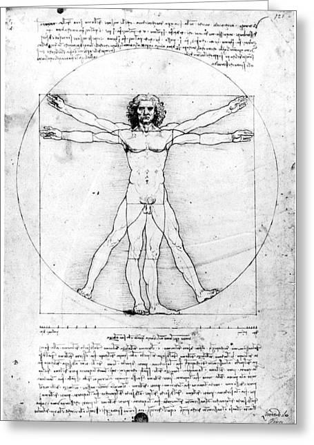 Vitruvian Man Greeting Cards - Leonardo: Anatomy Greeting Card by Granger
