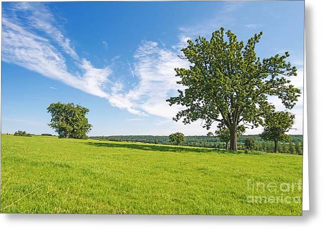 Limburg Greeting Cards - Rural landscape in summer Greeting Card by Jan Marijs