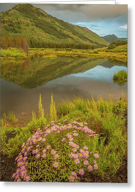 Usa, Colorado, Gunnison National Forest Greeting Card by Jaynes Gallery