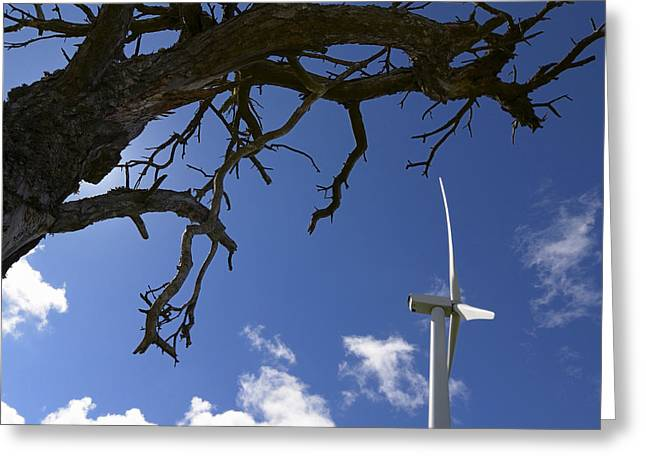 Bare Trees Greeting Cards - Wind turbine Greeting Card by Bernard Jaubert