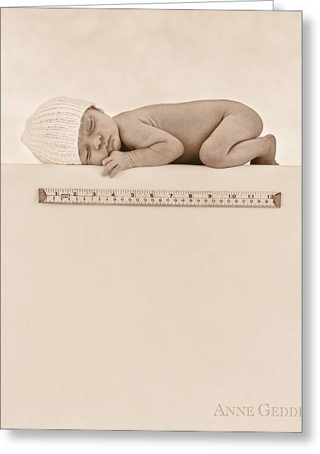 Newborns Greeting Cards - Untitled Greeting Card by Anne Geddes