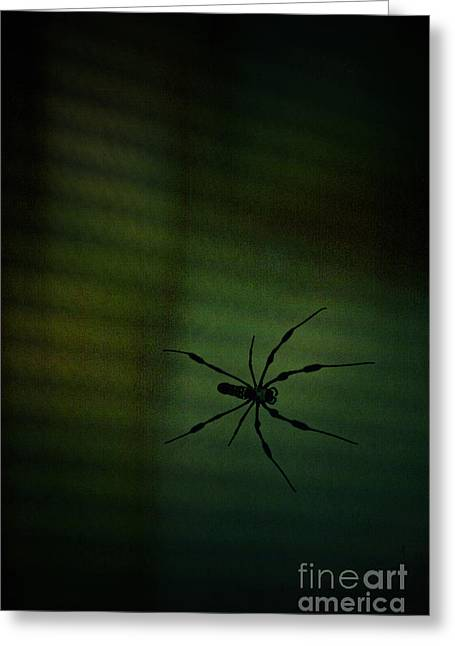 1..2  He's Coming For You Greeting Card by Trish Mistric