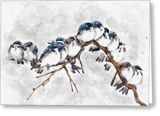 12 On A Twig Greeting Card by Marian Voicu